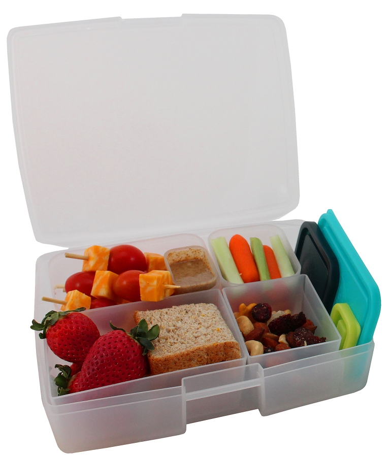 حافظات الطعام 6 تبرويرات ألوان بحرية من ماركة بنتولوجي